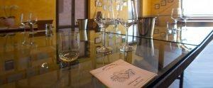 Visite in cantina e degustazione vini - Bricco Maiolica